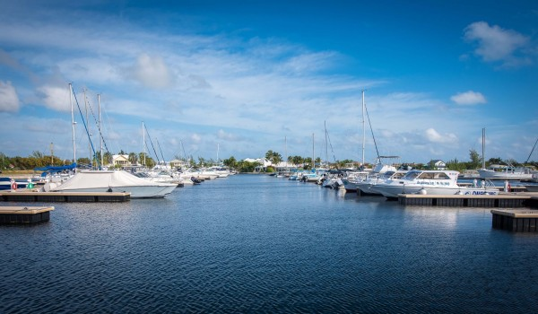 Marina - Cayman Islands Yacht Club - DSC_3075